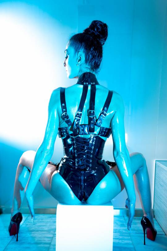 Andromeda Harness Corset with Detachable Thigh Belts